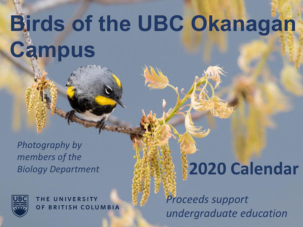 Birds of the UBC Okanagan Campus Cover